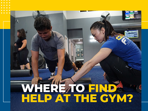 Where to Find Help at the Gym?
