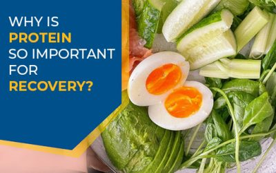 Why is protein so important for recovery?